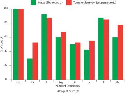 Nutrient Deficiency (Kalaji et al)